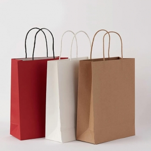 Custom printed hand gift shopping paper bag