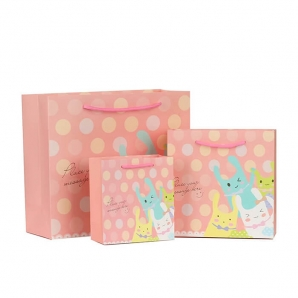 Gift paper bag - Fancy luxury hard paper bag